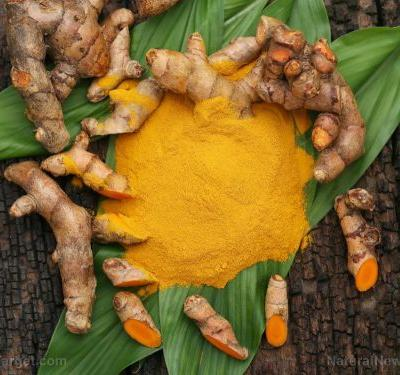 Provide the best possible environment for your genes: Eat more turmeric