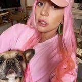 Lady Gaga Calls Her French Bulldogs Her 3 Little Piggies, and My Goodness, They're So Cute!