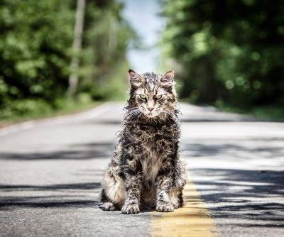 'Pet Sematary' review: Remake of Stephen King's classic has little bite