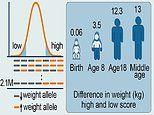 Babies could be given an 'obesity risk score' at BIRTH, study suggests