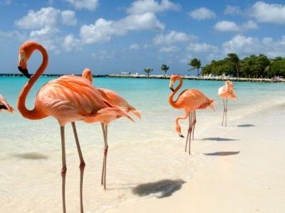 6 picturesque Caribbean islands to plan your next long holiday
