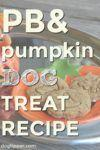 Peanut Butter and Pumpkin Dog Treat Recipe