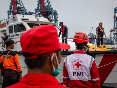 An Indonesian diver died looking for wreckage from the downed Lion Air jet