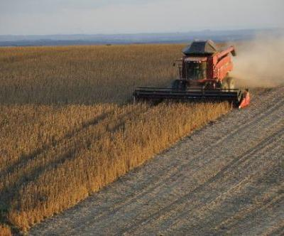 Trade War Causing Severe Pain As Farm Bankruptcies Surge Way Past The Level From The Last Recession