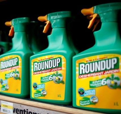 Bayer plunges after jury finds its Roundup weedkiller caused cancer