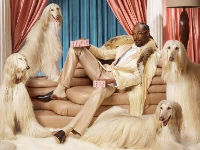 Rapper Snoop Dogg is partnering with Swedish fintech unicorn Klarna, and has become a major shareholder