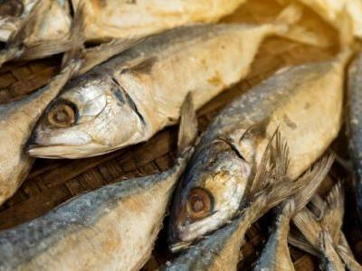 Mackerel Fish: The Cholesterol-Lowering, Bone-Strengthening Omega-3 Powerhouse