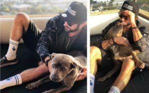 Zac Efron Takes On The Role Of Dog Dad To Death Row Rescue Pup