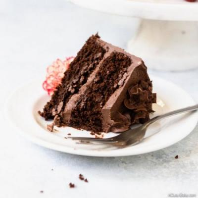 The BEST Paleo Chocolate Cake