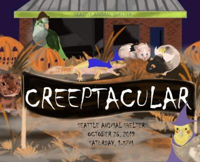 Meet and greet furry, scaly and feathered critters at Seattle Animal Shelter's annual Creeptacular!