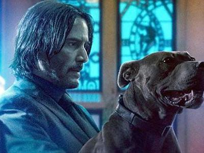 John Wick 3 Is Killing With Fans, Earning Highest Scores Of The Franchise