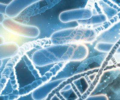 'Game changing' research discovers 'striking' links between genes and gut bacteria