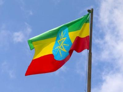 Ethiopian Lawmakers Vote To Ban Foreign Adoptions