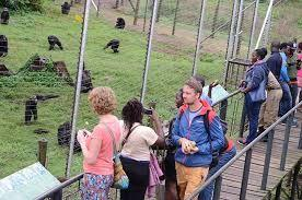 Uganda to spend at least $ 1.2 million for marketing its tourism potential