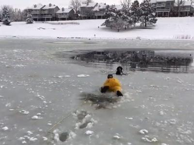 Heartwarming video shows firefighters saving dog trapped in frozen pond