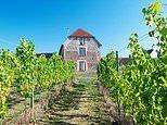 Great British Boltholes: Rathfinny Wine Estate in East Sussex