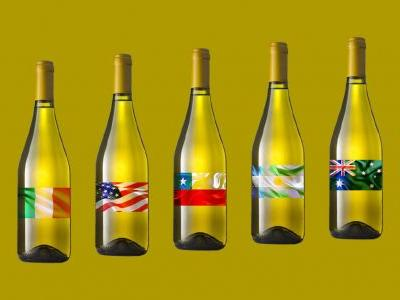 Style Guide: The World's Best Places for Growing Chardonnay