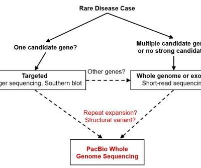Review: Long-Read Sequencing Helps Uncover Genetic Basis for Rare Disease