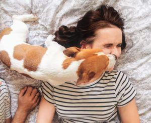 10 Things Only Small Dog Lovers Will Understand