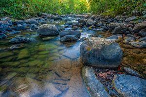 Acquisition of 100,000 acres of Cumberland Forest Mountains to boost nature-based tourism in TN, KY