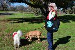 Win a RESCUE Tote Bag!