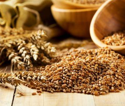 Whole grains offer an easy way to prevent Type 2 diabetes
