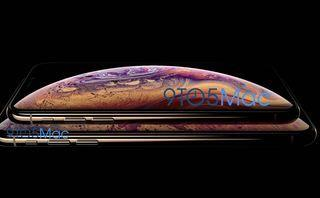IPhone XS release date, price and specs: 6.1in LCD iPhone leak confirms three colour options