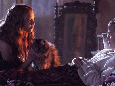 Game of Thrones Showrunners Reveal Ser Pounce's Tragic Fate