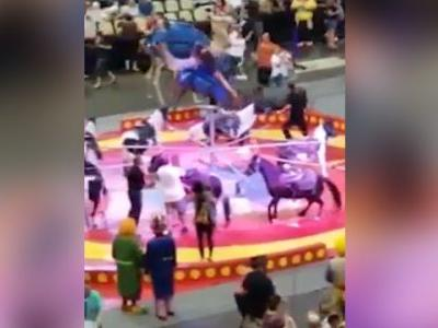 Graphic video: Spooked camel starts bucking at circus, injuring 6 kids and adult