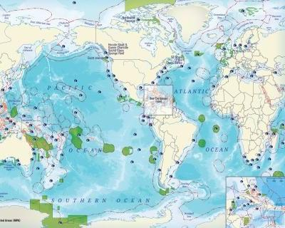 Saving hope: One at-risk ocean hotspot at a time
