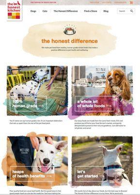 The Honest Kitchen Tearsheets