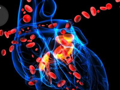 Does COAPT Change the Need to Try Foundational HF Drugs in Functional MR?