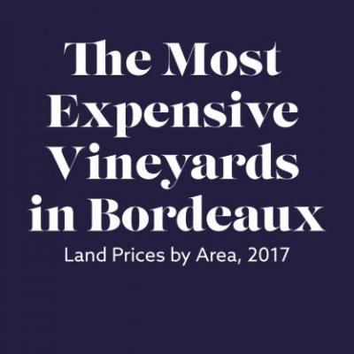 The Most Expensive Vineyards in Bordeaux, Mapped