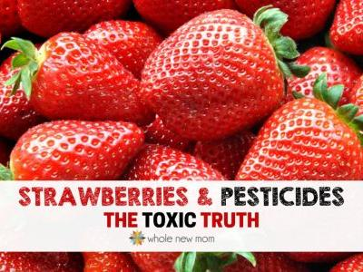 Strawberry Pesticides-the TOXIC Truth