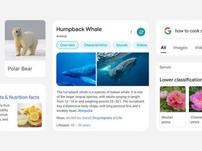 Google Mobile Search Just Got A Brand New Design