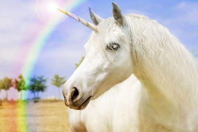 The Unicorn Beauty Trend: Yay or Nay?