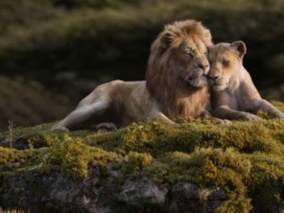 'The Lion King' TV Spot: Donald Glover and Beyoncé Feel the Love Tonight