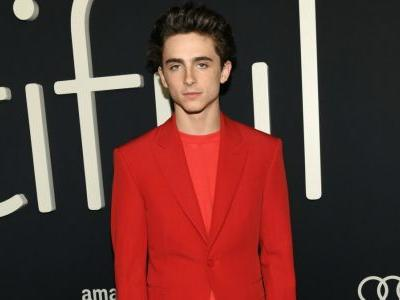 Here Is Timothée Chalamet in a Very Good Red Louis Vuitton Suit