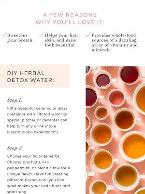 Detox Trend: DIY Herbal Detox Water Recipe
