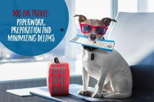 Dog Air Travel: Paperwork, Preparation and Minimizing Delays
