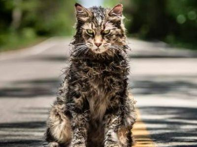 Daily Podcast: Visiting The Set of Pet Sematary, Annapurna, Universal Soldier, Quibi, Spider-Man, Rambo 5, Suicide Squad