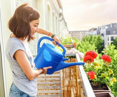 The 7 Best Watering Cans