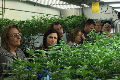 Weed 101 classes held and Colorado officials are the teachers