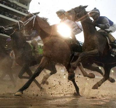 Preakness Stakes 2018: How to bet every horse in second leg of the Triple Crown