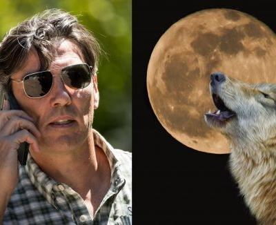 Former AOL CEO Tim Armstrong wrote a weird memo announcing his startup's spirit animal, and picking the wolf because it's 'flow' spelled backwards