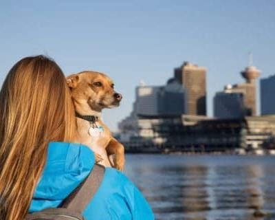Vancouver's Top 5 Dog Friendly Things To Do