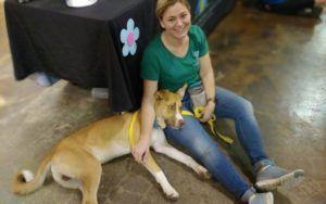 """Shelter Dog Returned By Adopters For Being """"Too Good"""""""