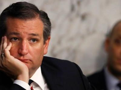 Ted Cruz doesn't think Trump's idea of shutting down US-Mexico border is a smart move: 'The answer is not to punish Texas'