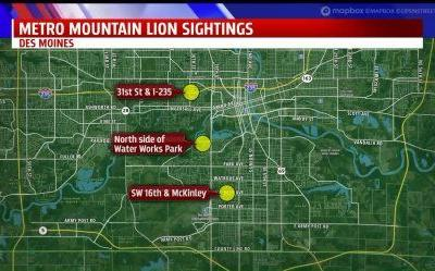 Mountain Lion Sightings Have Des Moines Residents Watchful