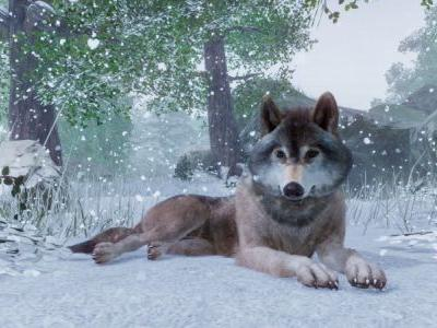 Five Reasons Planet Zoo Is Promising